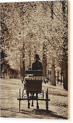 Buggy Ride Wood Print
