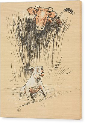Bull And Dog In Field Wood Print by Cecil Charles Windsor Aldin