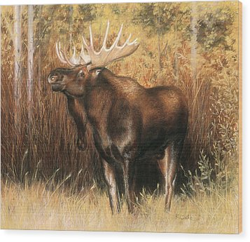 Bull Moose Wood Print by Karen Cade