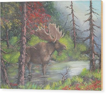 Bull Moose Wood Print by Megan Walsh