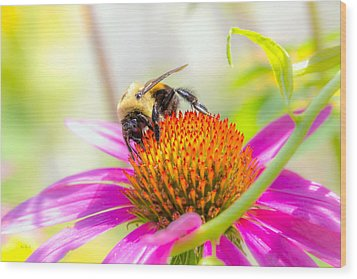 Bumble Bee Wood Print by Bob Orsillo