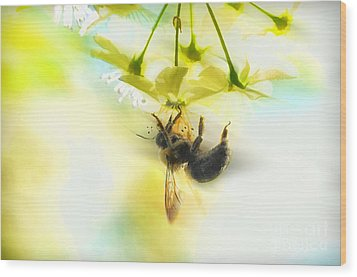 Bumble Going In For The Nectar Wood Print by Dan Friend