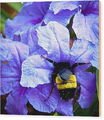 Bumblebee Brunch Wood Print by Dee Dee  Whittle