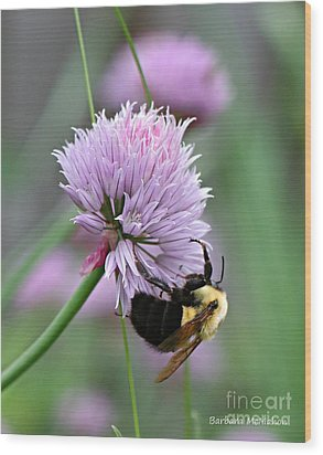 Wood Print featuring the photograph Bumblebee On Clover by Barbara McMahon