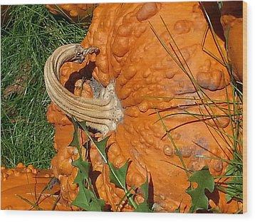 Wood Print featuring the photograph Bumpy And Beautiful by Caryl J Bohn