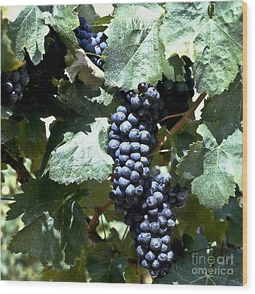Bunch Of Grapes Wood Print by Heiko Koehrer-Wagner