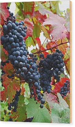 Bunches Of Grapes Wood Print by Jani Freimann