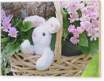 Bunny In A Basket Wood Print by Kathleen Struckle