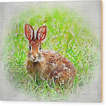 Bunny - Watercolor Art Wood Print by Kerri Farley