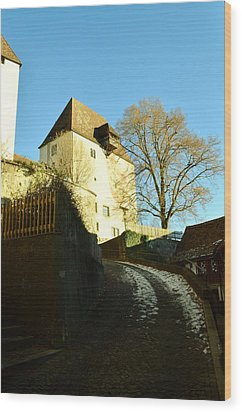 Wood Print featuring the photograph Burgdorf Castle In December by Felicia Tica