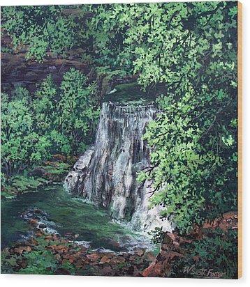 Burgess Falls State Park Tn. Wood Print by W  Scott Fenton
