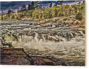 Burleigh Falls  Wood Print by Douglas Pike