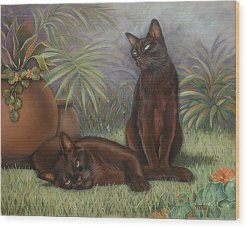 Burmese Beauty Wood Print by Cynthia House