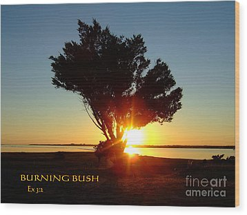 Wood Print featuring the photograph Burning Bush by Bob Sample