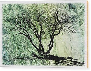 Wood Print featuring the photograph Burning Bush by Liz  Alderdice