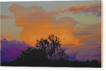 Burning Bush Wood Print by Robert J Andler