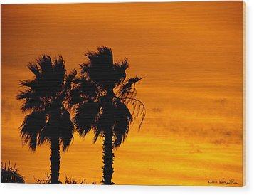 Wood Print featuring the photograph Burning Palms by Kathy Ponce