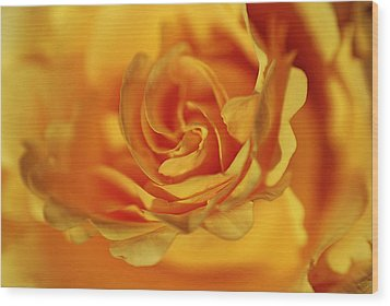 Wood Print featuring the photograph Burning Yellow by Lorenzo Cassina