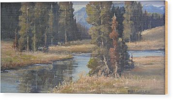 Burnished Meadow Wood Print by Mar Evers