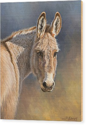 Burro Wood Print by Paul Krapf