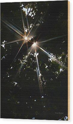 Bursting Through Trees Wood Print by Donna Blackhall