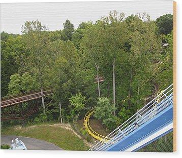 Busch Gardens - 121213 Wood Print by DC Photographer