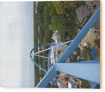 Busch Gardens - 121214 Wood Print by DC Photographer