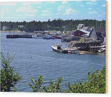 Bush Island Nova Scotia Wood Print