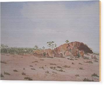 Bush Land Australia Wood Print