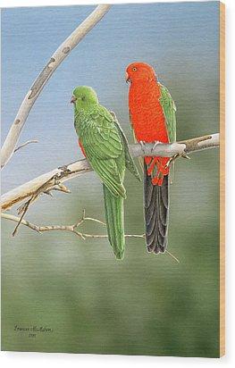 Bush Monarchs - King Parrots Wood Print by Frances McMahon