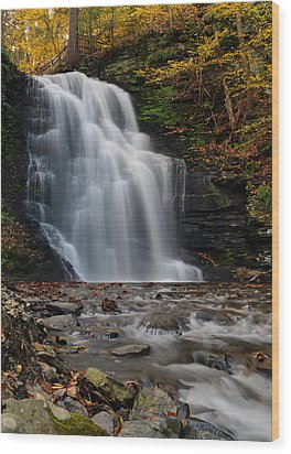 Bushkill Falls Wood Print by Yue Wang