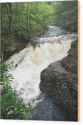 Wood Print featuring the photograph Bushkill Rapids by Richard Reeve