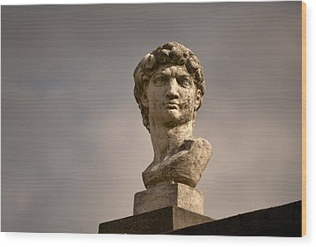 Wood Print featuring the photograph Bust Of Apollo by Nadalyn Larsen