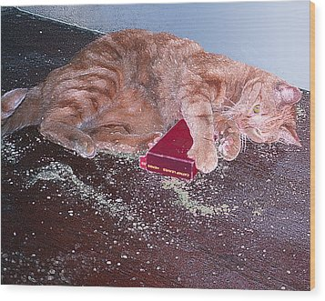 Buster Slopped-out On Catnip Wood Print