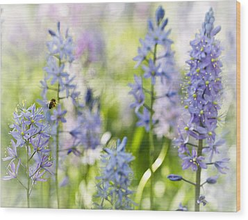 Wood Print featuring the photograph Busy Bee by Annette Hugen