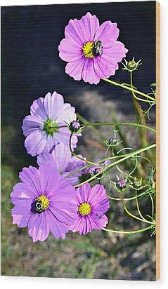 Busy Bees Wood Print by Susan Leggett