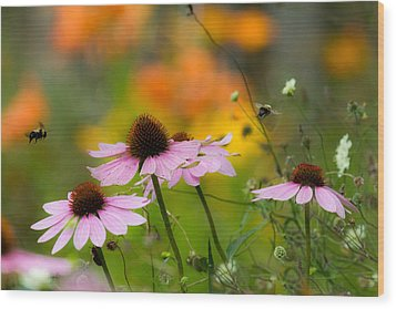 Wood Print featuring the photograph Busy Morning by Mary Amerman