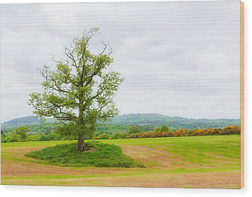 But Only God Can Make A Tree Wood Print by Semmick Photo