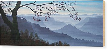 Butte Creek Canyon Mural Wood Print by Frank Wilson