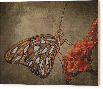 Wood Print featuring the photograph Butterflies Are Free by Linda Karlin