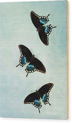 Butterflies In Flight Wood Print by Stephanie Frey