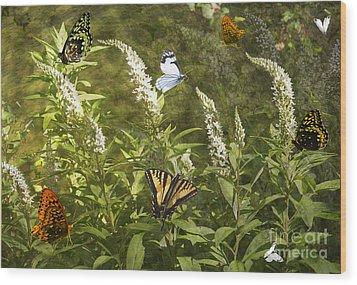 Butterflies In Golden Garden Wood Print by Belinda Greb