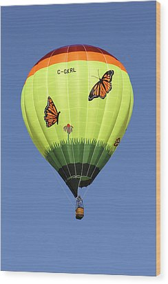 Butterflies  Wood Print by Mike McGlothlen