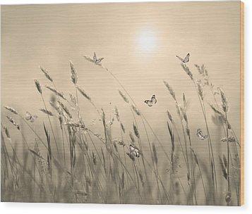 Wood Print featuring the digital art Butterflies by Nina Bradica