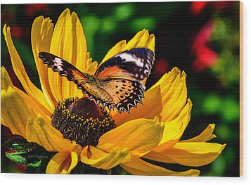 Butterfly And Bloom Wood Print by Julie Palencia