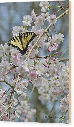 Butterfly And Blooms Wood Print by Kenny Francis