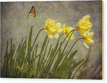Butterfly And Daffodils Wood Print