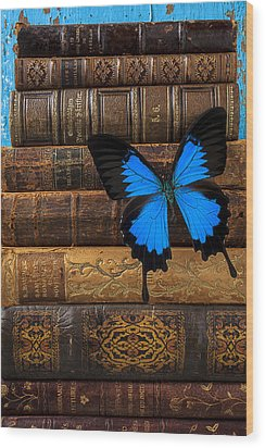 Butterfly And Old Books Wood Print by Garry Gay