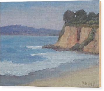 Butterfly Beach Afternoon Series 4 Wood Print