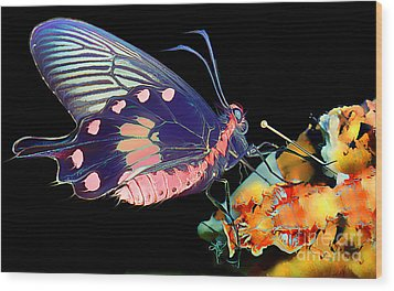 Butterfly Brushed In Water And Wind Wood Print by Wernher Krutein